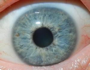 eyemgg