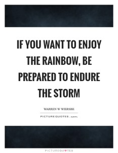 if-you-want-to-enjoy-the-rainbow-be-prepared-to-endure-the-storm-quote-1